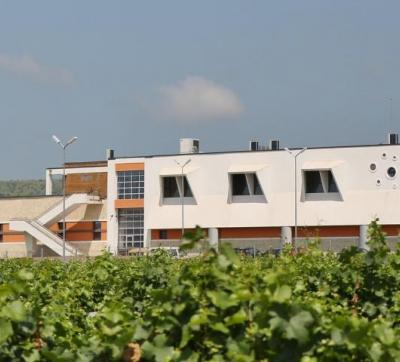 Budureasca Winery