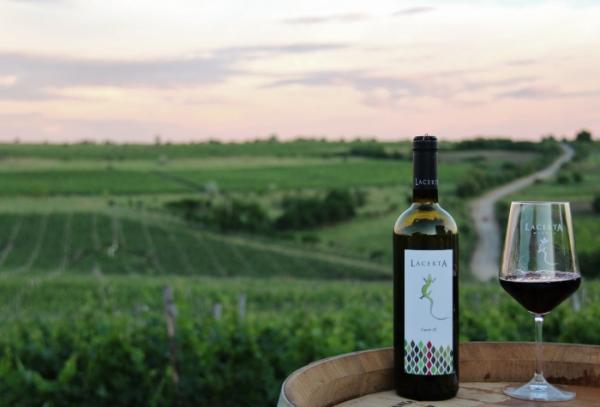 Interview with Mihai Banita, LacertA Winery wine expert