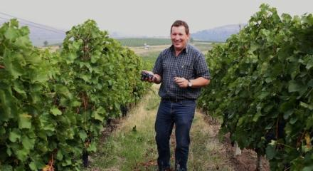 Interview with oenologist Albertus van der Merwe, wines from the New World at Tohani Estate