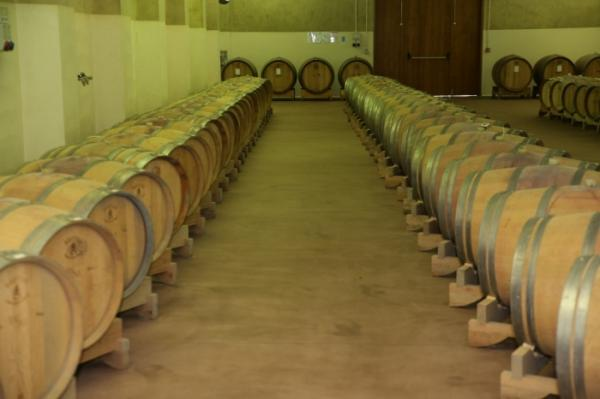 Petro Vaselo, the winery where you'll meet the youngest wine expert in Romania
