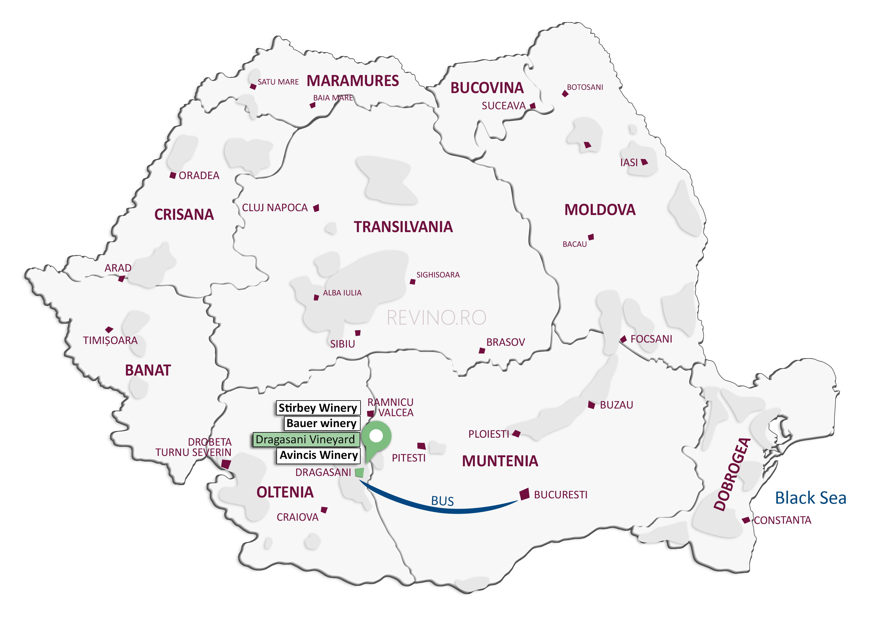 wine map dragasani